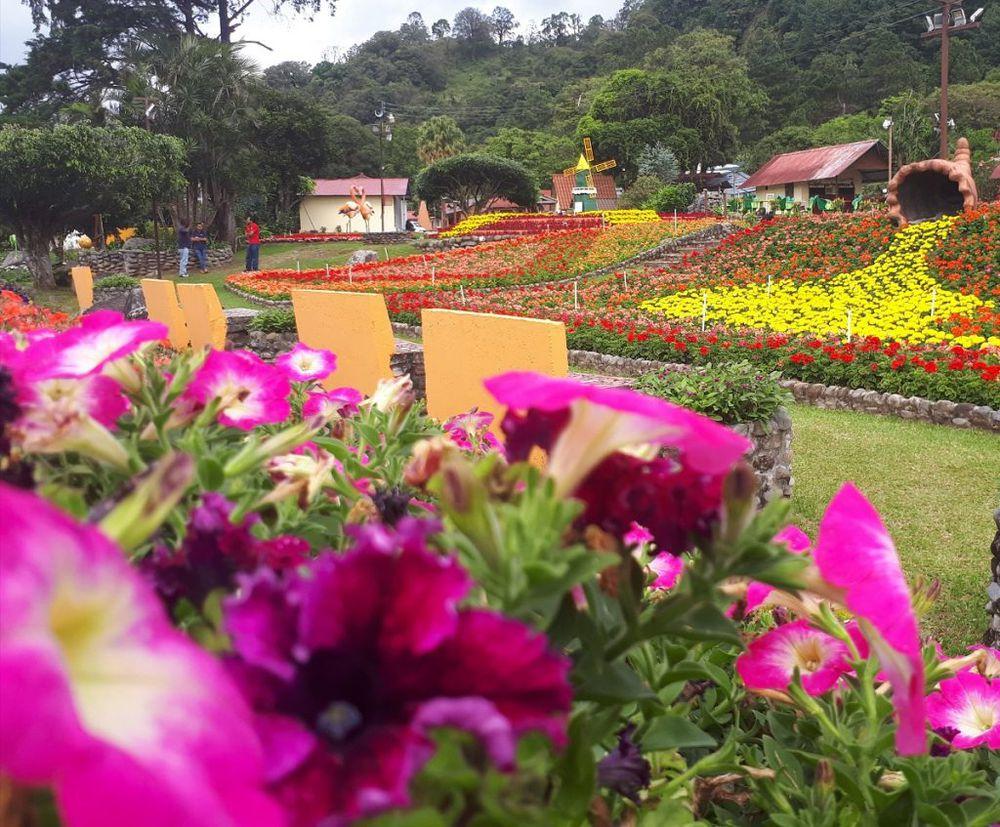 Del circuito del café a los multidestinos naturales Chiriquí-Bocas del Toro